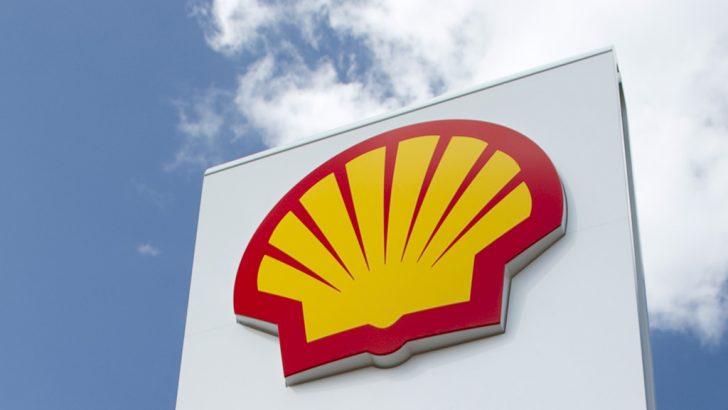 """Shell Türkiye'den, daha iyi bir gelecek için ilk """"Shell Türkiye Ormanı"""""""